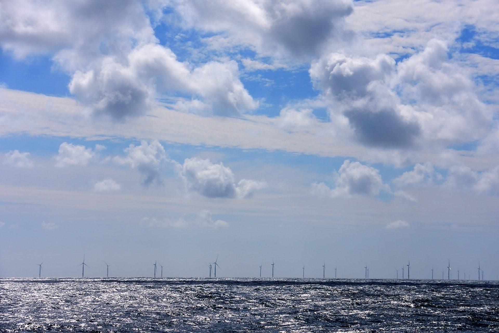 Sylt Reef Windmolen Denemarken OCEANA Carlos Minguel 3