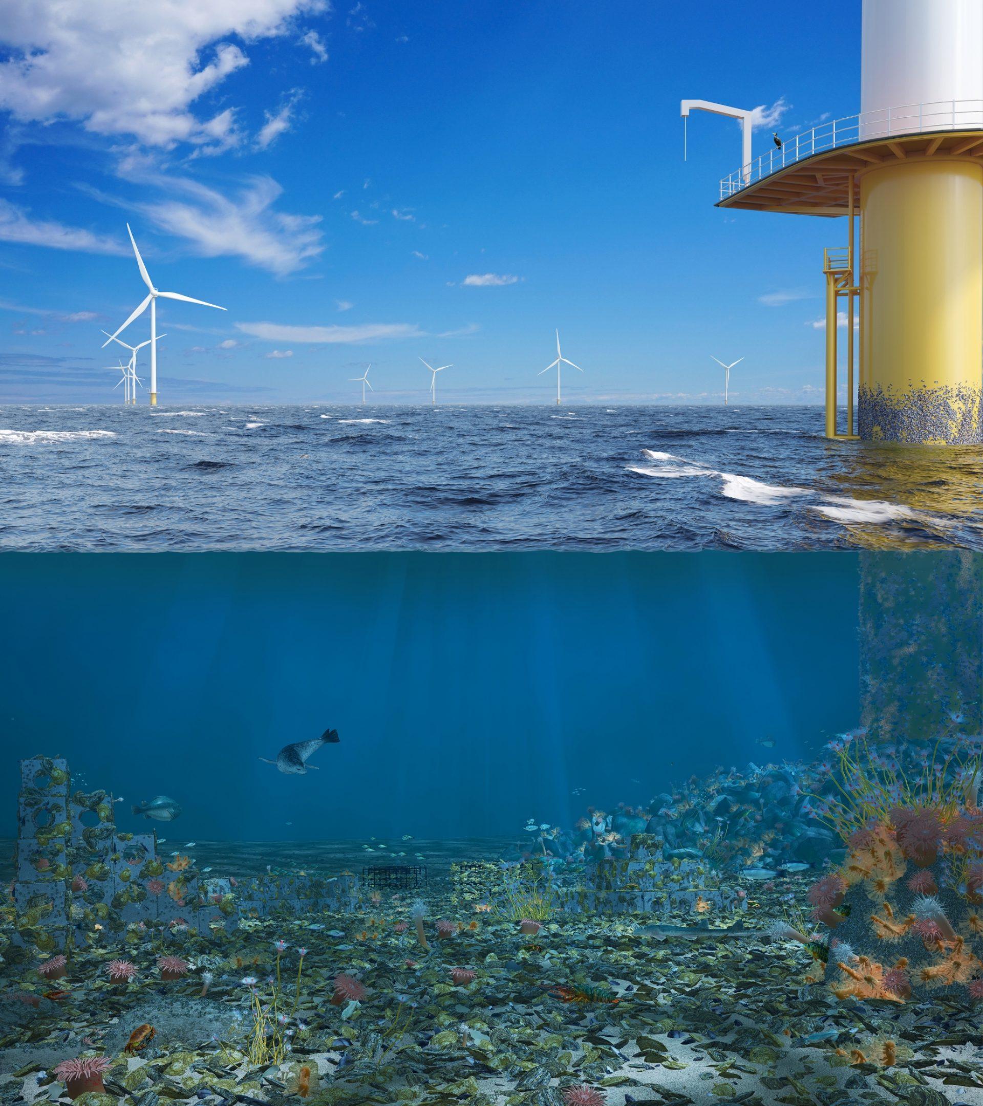 De Rijke Noordzee Offshore Quarter size