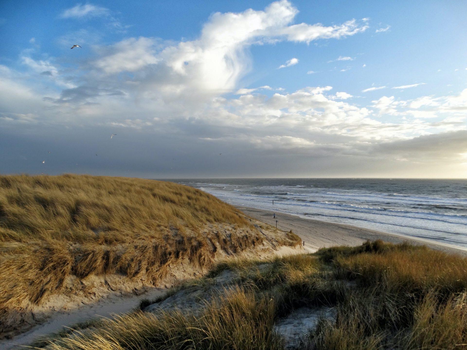 De Rijke Noordzee, waar wind en natuur elkaar versterken. Bron van duurzame energie, rijk aan natuur en vol leven.