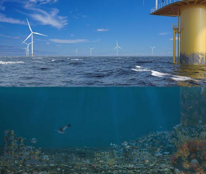 De Rijke Noordzee Offshore