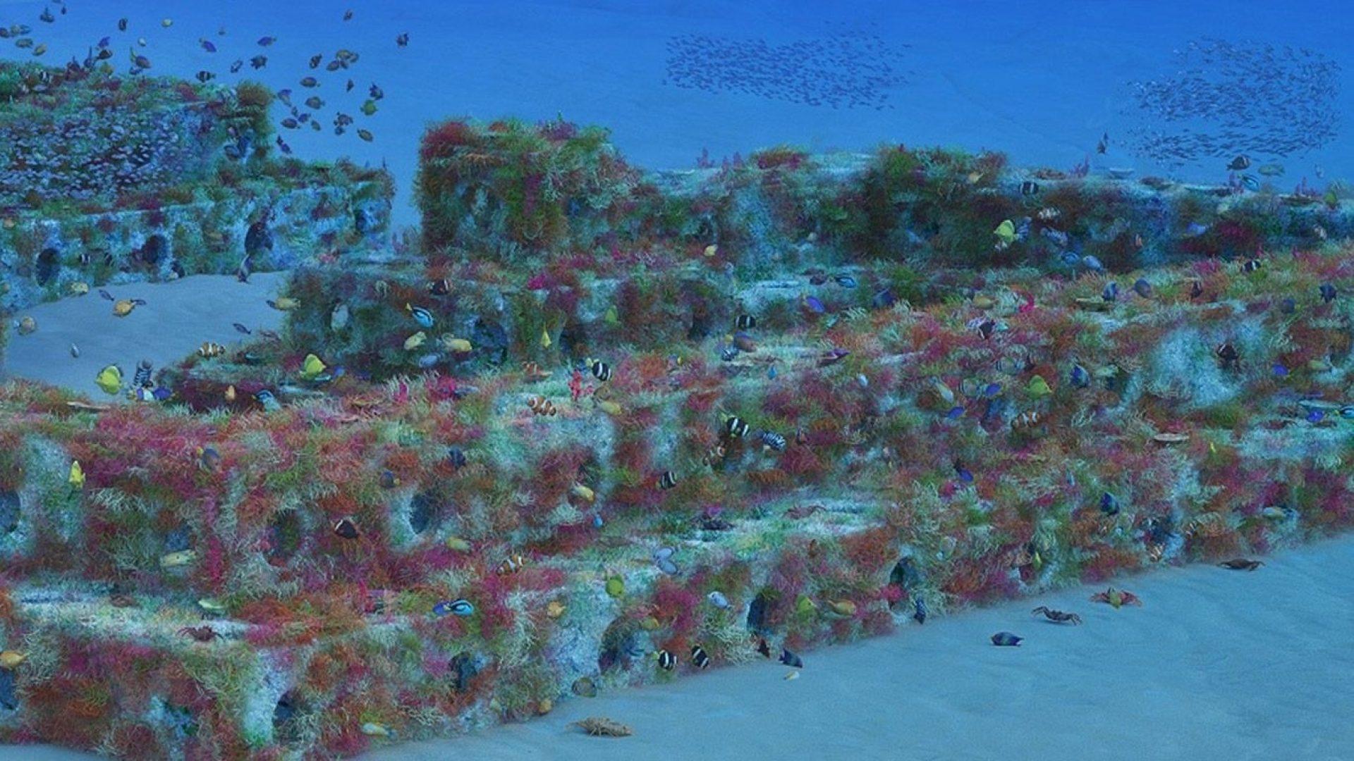 Reefcubes